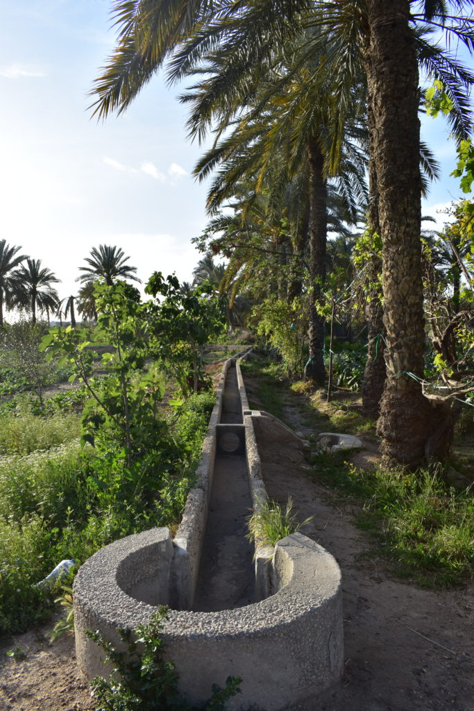 Seguias en béton dans l'oasis de Menzel, Gabès (Photo : Pola Anquetil-Barba